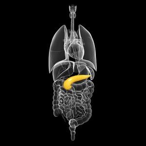 Pancreatitis-social-security-disability